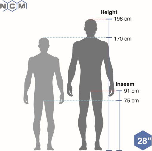 ncm-venice-basis-schwarz-size-diagram-human